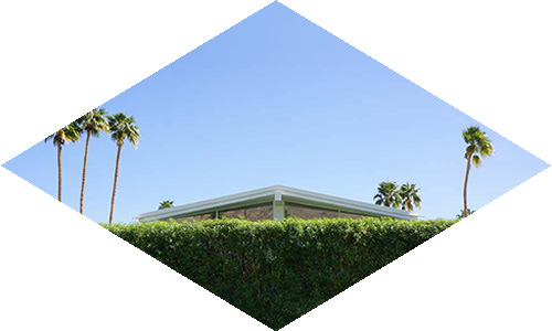 Architect_and_Friends_Palm_Springs_01.jpg