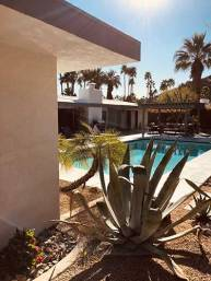 architect-and-friends-blog-home-tour-palm-springs